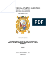 PROYECTO DE TESIS  PACIENTES MENTALES.docx