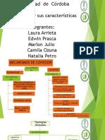 competencias.pptx [Autoguardado].pptx