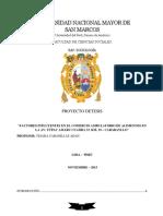 proyecto de tesis de comercio ambulatorio.docx