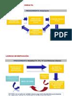 procedimiento de licencia.pdf