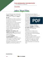 Manual de Index Your Files