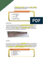 Geologia Unsch Recorrido Quinua- Socos