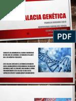 Falacia Genética Franklin Miranda Solis