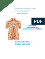 Vascular Periferico . Material Del Dr Jesus Catillo.