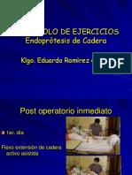 EJERCICIOS ENDOPROTESIS DE CADERA
