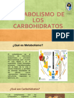 Metabolismo de Los Carbohidratos Expo