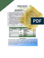 Sistema Biofisico Santa Rosa Viterbo (29 Pag 979 Kb) (1)