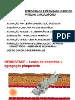 Hemostase