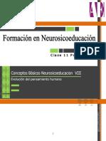 Conceptos Básicos Neurosicoeducacion  VIII