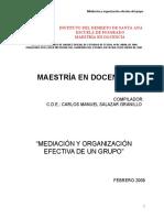 Mediacion y Organizacion Efectiva de Un Grupo