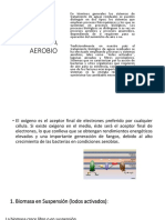 Sistema Aerobio