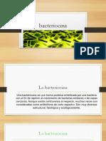 Bacteriocinas