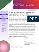 What is Emotion Regulation Info Brief
