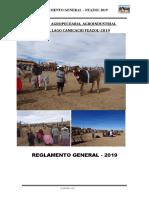 programa y reglamento 2019.docx