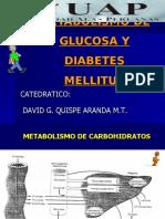 Clase 2. Glucemia