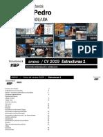 E1 CV-2019 - Pedro cuadernillo anexo.pdf