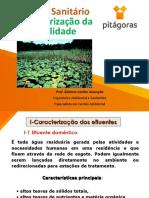 Impactos+ambientais+do+lançamento+de+efluentes+in+natura