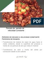 Secado.pdf