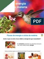 Ficha Avaliacao 2