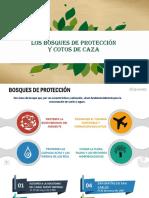 Los bosques de protección Y COTOS DE CAZA.pptx