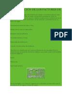 CLASIFICACIÓN DE LOS FACTORES DE RIESGO sgsst.docx