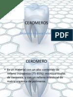 ceromeros-120910131307-phpapp01.pdf