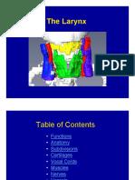 The Larynx