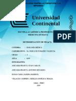 INFORME PH.docx