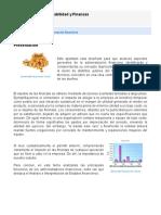 153624810-Fundamentos-de-Contabilidad-y-Finanzas.pdf
