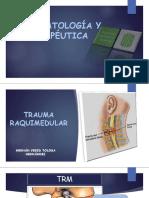 TRM FISIOPATO 2016.pdf