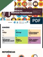 LIVRO_curriculo-e-praticas-pedagogicas_completo (1).pdf