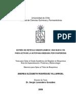 ESTRES CELULAR CHAPERONAS.pdf