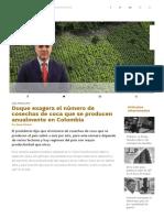 Duque exagera el número de cosechas de coca que se producen anualmente en Colombia _ ColombiaCheck.pdf