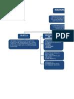 Mapa Conceptual Auditoría Interna