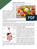 Importância Da Alimentação No Corpo Humano