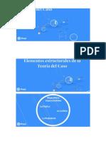 Elementos Estructurales de La Teoría Del Caso.docx 2