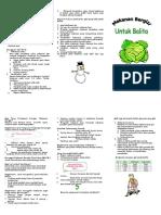 Leaflet Balita KEP