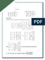 Solución de la Practica Virtual.docx