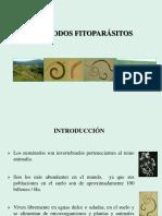 12. NEMATODOS FITOPAT-3.pdf
