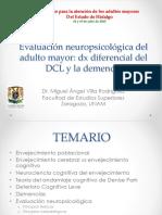 eval_npsic_dem_pachuca_2013.pdf