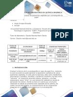 Informe Practica 8- Cromatografia (1)