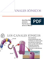 4 Canales Ionicos