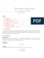 Matrices Invertibles y Elementos de Algebra Matricial