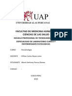 LESMANIA CORREGIDO.docx