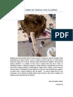 PEINADO LIBRE DE TENZAS CON ALAMBRE.docx