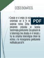 procesos enzimaticos.pptx