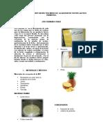 Informe Yogurt Final