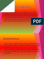 LA PLANCHA Diapositivas