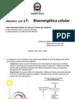 Clase 16-17- Bioenergética (1).pdf