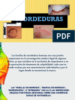 MORDEDURAS PPT.pptx